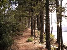 Path Overlooking Lake